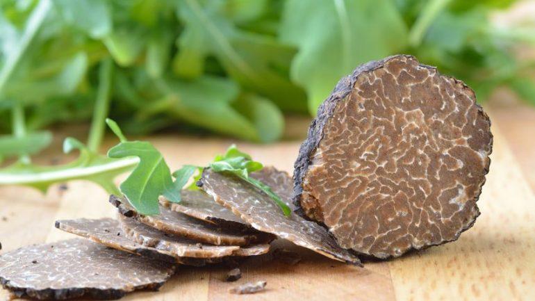 11699695 - fresh black truffle