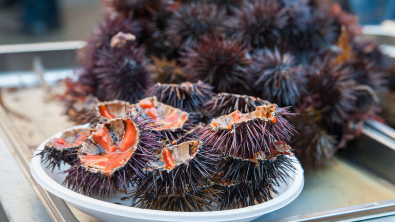 38665055 - cut sea urchins laid on a dish for sale in the public fishmarket of catania, sicily