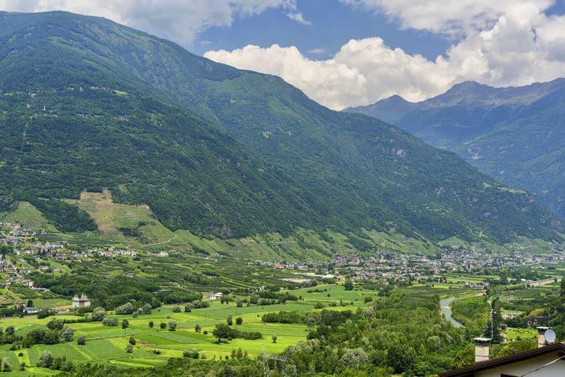 The Valtellina valley in summer
