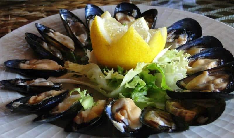 Raw seafood mussels Puglia