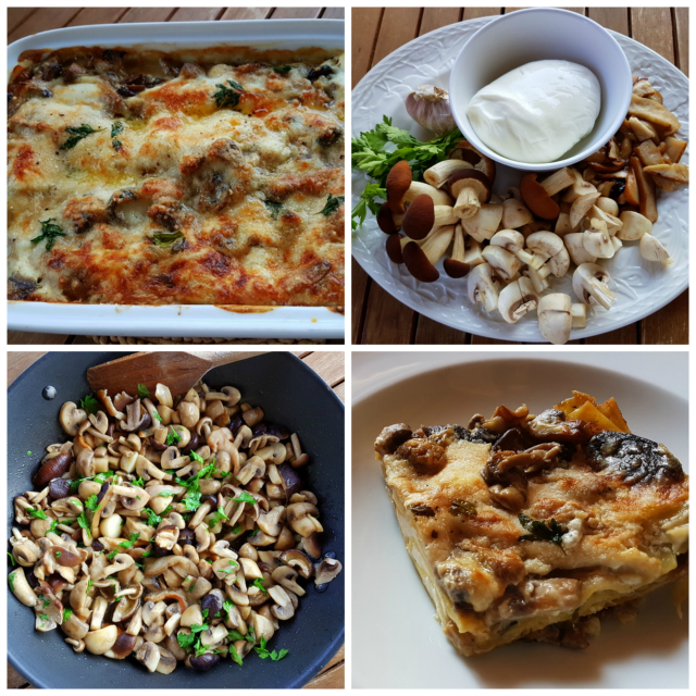 Lasagna bianca with mushrooms and burrata