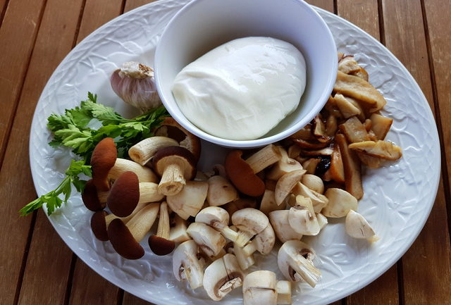 lasagna bianca with mushrooms and burrata ingredients
