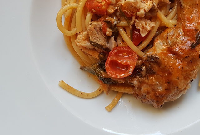 Bucatini pasta with rabbit