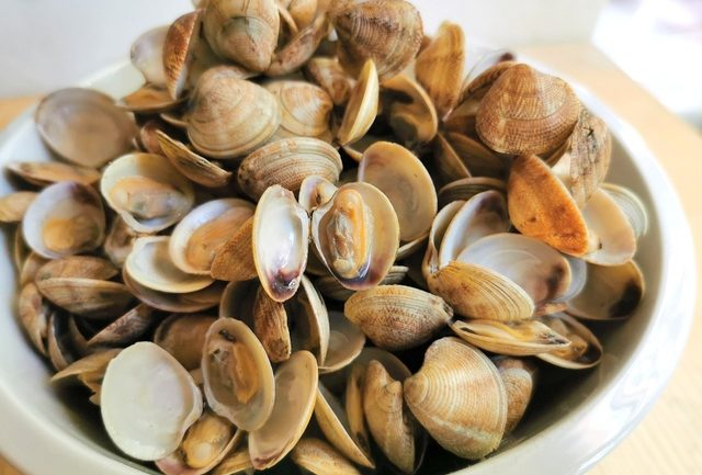 cooked small clams in a white bowl