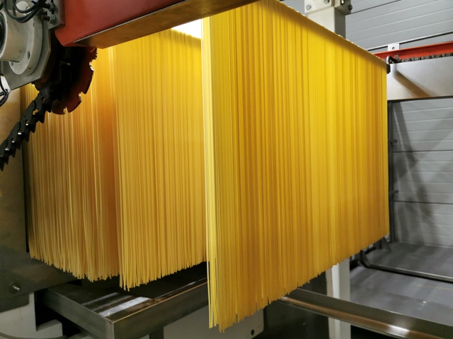 spaghetti on production line at Pasta Mancini