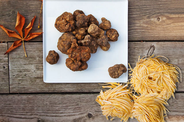 White truffles and tajarin Piedmont