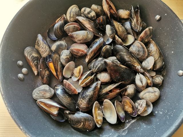 fresh clams and mussels cooking in a large skillet