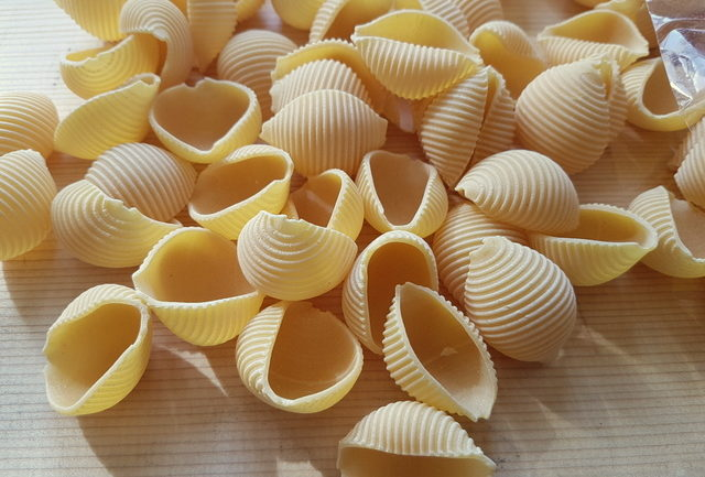 conchiglie pasta shells