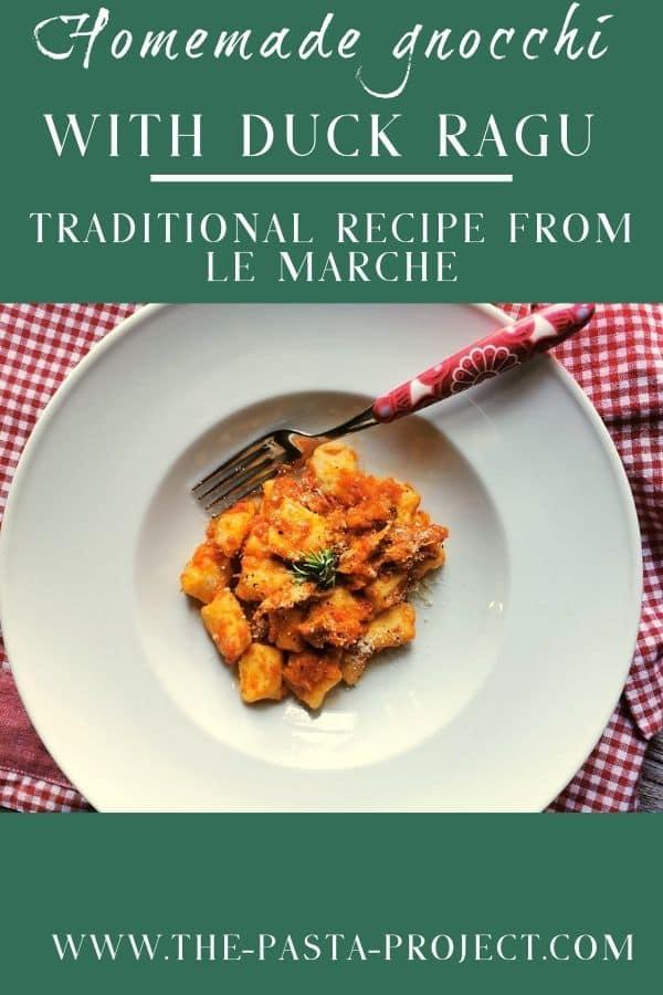 homemade potato gnocchi with duck ragu