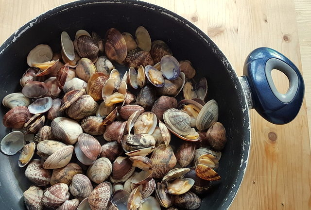 vongole (clams ) in frying pan for linguine pasta alle vongole