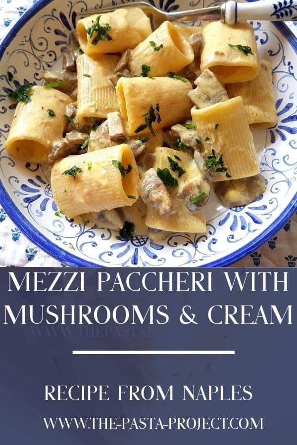 mezzi paccheri pasta with mushrooms and cream