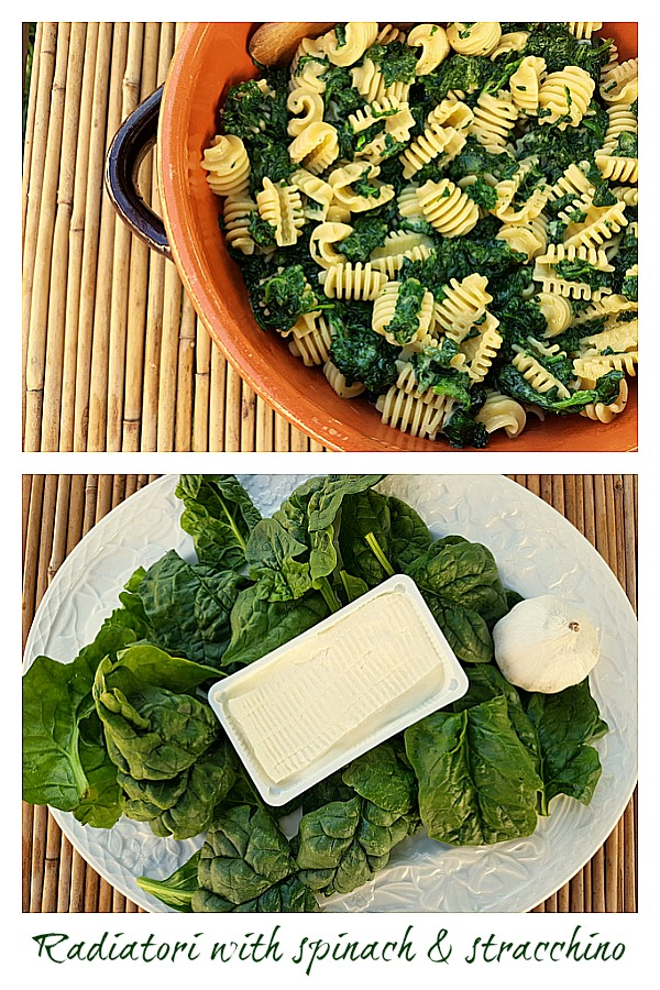 radiatori with spinach and stracchino
