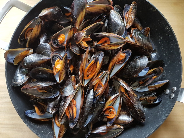 fresh mussels cooking in skillet